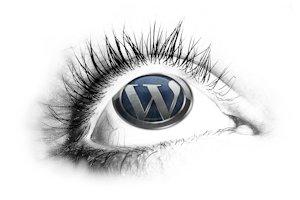 wordpress-eye